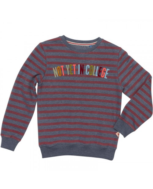 Sweater Neuro Blue/Bordeaux Stripe