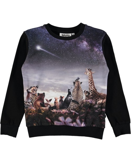 Sweater Wish Upon A Star
