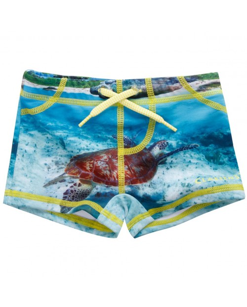 Tight Fit Boys swimboxer turtle