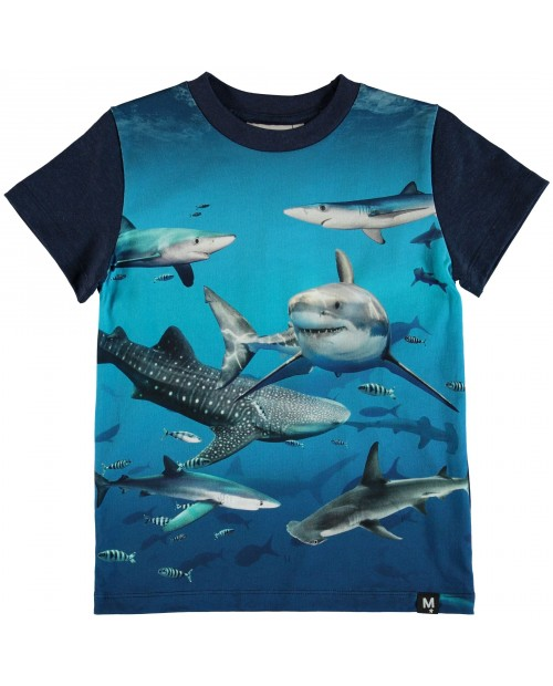T-shirt Shark Smile