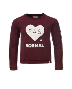 Sweater Pas Normal