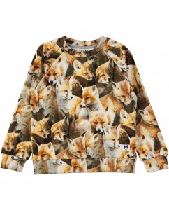 Sweater Fox Cubs